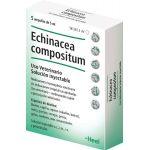 ECHINACEA COMPOSITUM 5 AMPOLLAS 5 ML